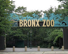 Manhattan Zoo