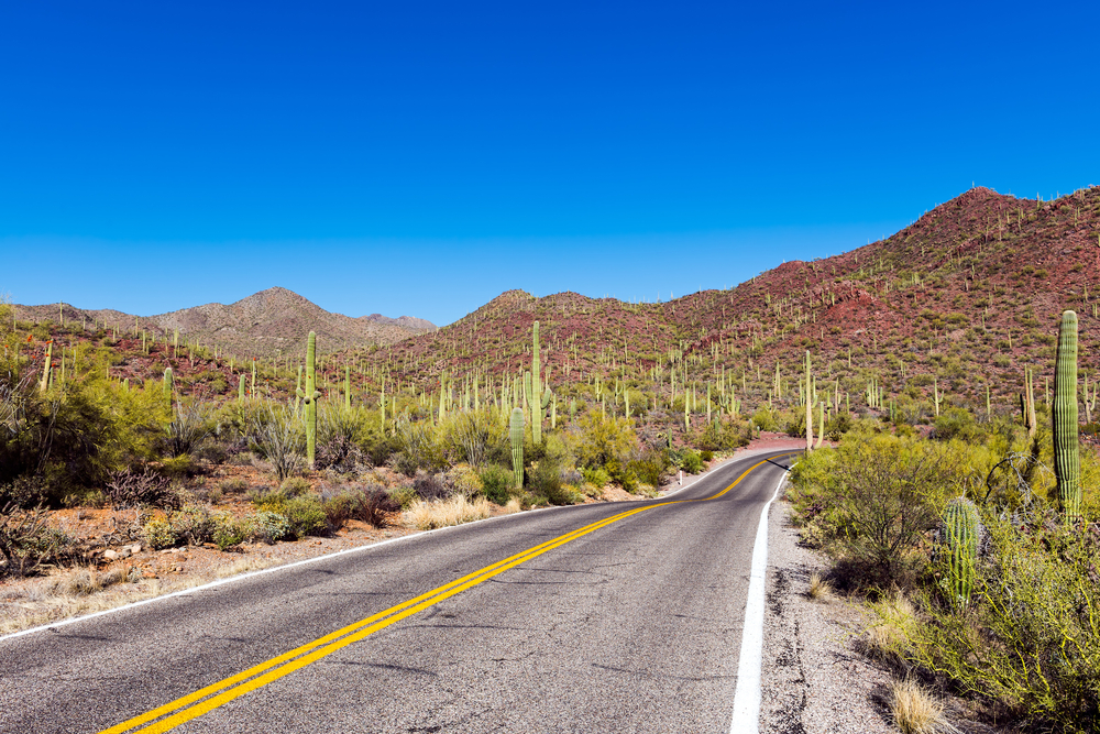 Saguaro National Park Arizona road trip